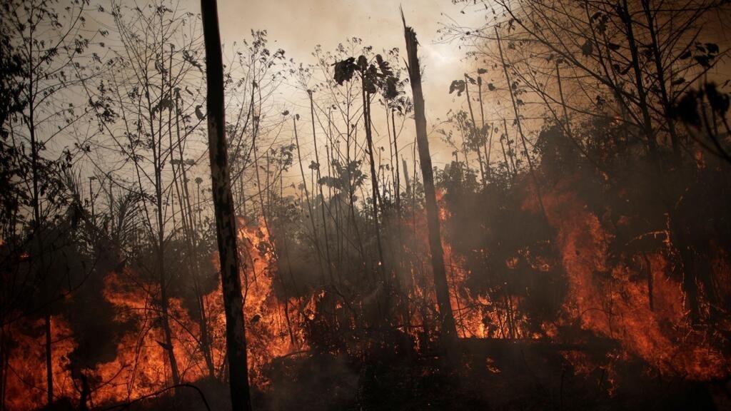 البرازيل ترسل طائرات حربية وعشرات الآلاف من الجنود لمكافحة الحرائق في غابات الأمازون