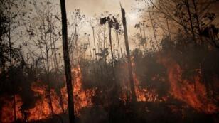 حرائق غابات الأمازون بالبرازيل. 23 أغسطس/آب 2019