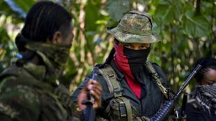 Esta foto tomada el 26 de enero de 2017 muestra a Danilo Hernández, (C) comandante del Frente Occidental de Guerra Resistencia Cimarron del Ejército de Liberación Nacional (ELN), durante una entrevista con AFP en Alto Baudo, en el departamento del Chocó, Colombia.