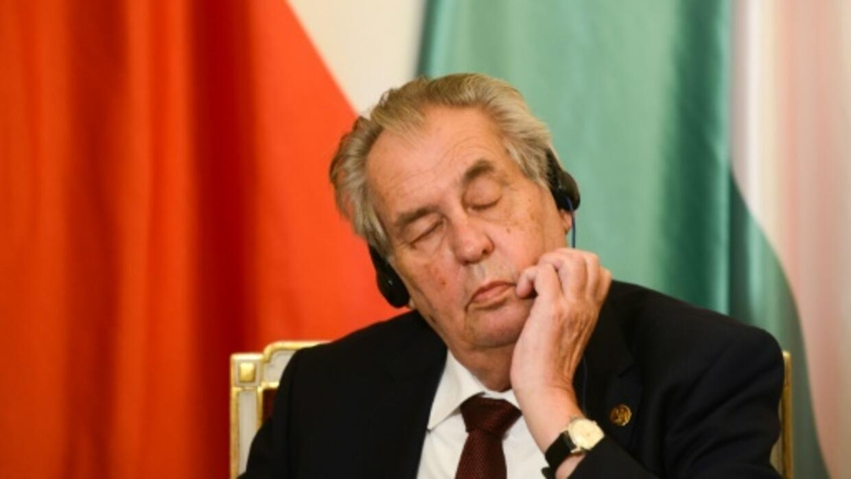 Czech president in hospital for 'reconditioning'