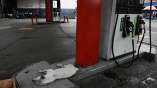 Vista de una estación de servicio cerrada por falta de gasolina en las afueras de Caracas, Venezuela, el 21 de mayo de 2019. En Venezuela, un huevo y 93,3 millones de litros de gasolina cuestan lo mismo.