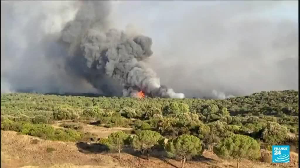 2021-08-18 10:08 Incendies dans le Var : un personne décédée