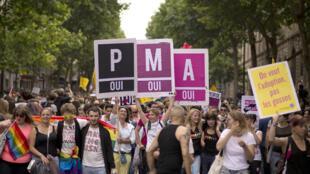 Manifestants pro-PMA lors de la Gay pride, le 29 juin 2013, à Paris.