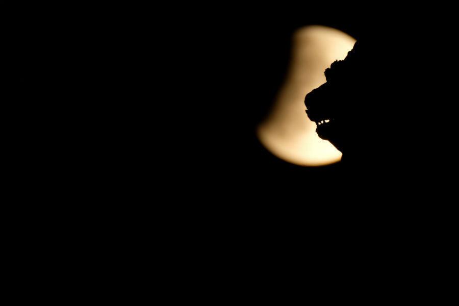 Le lion ailé de Saint-Marc à Venise, vu sur fond d'éclipse partielle de Lune, en Italie, le 16 juillet 2019.