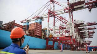 En los puertos chinos de Dalián y Xiamen, la Administración de Aduanas realizó pruebas con muestras de un contenedor y de paquetes de camarones blancos del Pacífico que dieron positivo al nuevo coronavirus