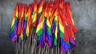 Egypt's Supreme Council for Media Regulation has banned the appearance of homosexuals on any outlet after a rainbow flag was waved during a 2017 Cairo concert