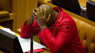 Un membre du principal parti d'opposition sud-africain se désole, le 10 novembre 2016, du rejet de la motion de défiance déposée par l'Alliance démocratique contre Jacob Zuma.