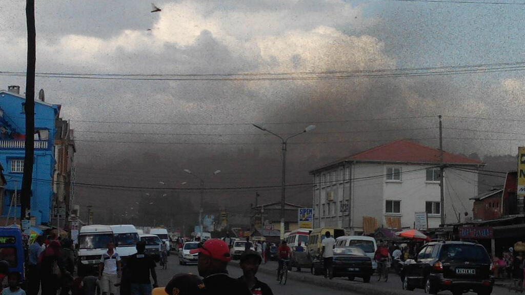 Invasion de criquets dans le centre-ville de la capitale malgache, vendredi 28 août.