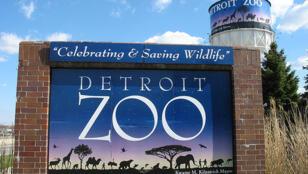 Le zoo de Detroit