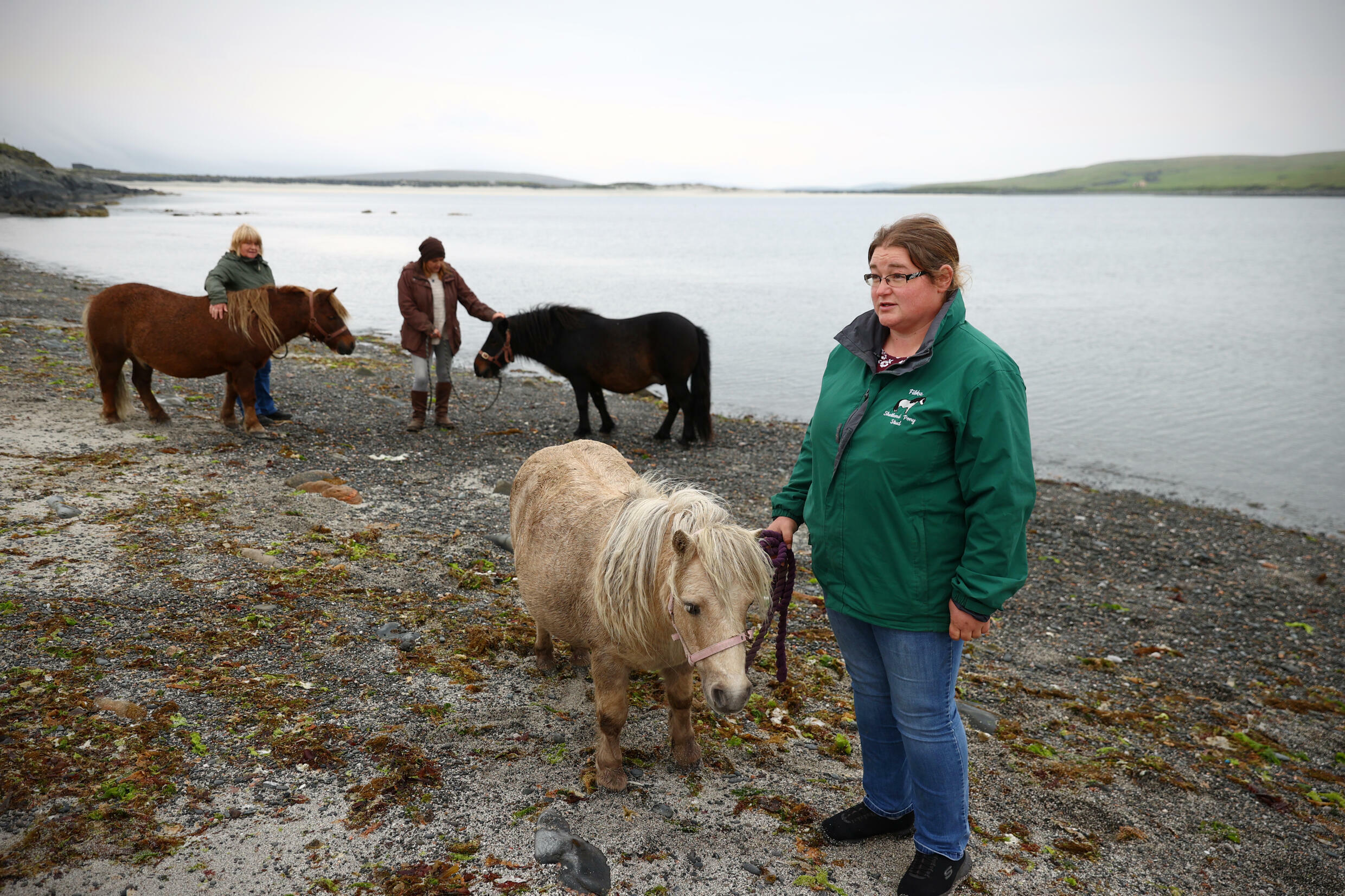'A pony is a very nice way to spend your time,' says Sheena Anderson, chair of the Pony Breeders of Shetland Association