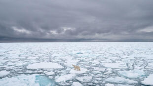 The Arctic, with its extreme climate and immense oil and gas resources, is also threatened by global warming