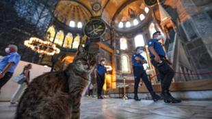 A l'intérieur de l'ex-basilique de Sainte-Sophie, reconvertie en mosquée, le 10 juillet 2020 à Istanbul
