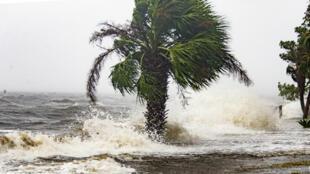 De violentes vagues à Shell Point Beach, en Floride, le 10 octobre 2018.