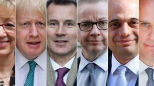 Andrea Leadsom, Boris Johnson, Jeremy Hunt, Michael Gove, Sajid Javid y Dominic Raab  son los favoritos en las primarias de los conservadores.