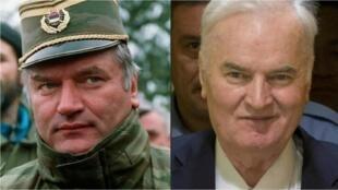Mladic  l'assassin des Balkans AFP