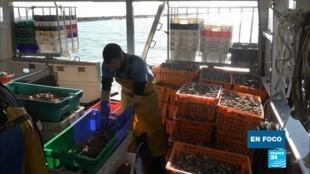 en foco - pescadores Jersey