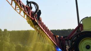 La France consomme 8000tonnes de glyphosate chaque année.