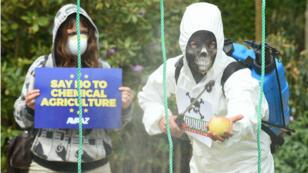 Des manifestants s'opposent au renouvellement de la licence du glyphosate, à Bruxelles, le 18 mai 2016.