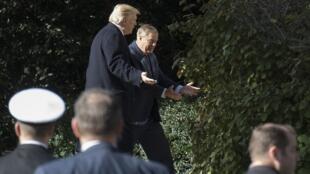 الرئيس الأمريكي دونالد ترامب والسيناتور الجمهوري ليندسي غراهام 8 نوفمبر/تشرين الثاني 2018