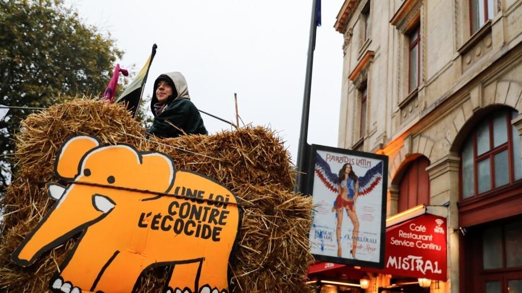 """En France, """"l'exécutif enterre la notion de crime d'écocide"""""""