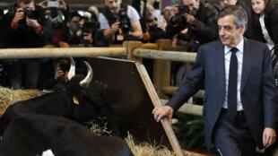 François Fillon au Salon de l'agriculture le 1er mars 2017.