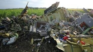 The wreckage of Malaysia Airlines flight MH17 on July 19, 2014, two days after it crashed in a sunflower field near the village of Rassipnoe, in rebel-held eastern Ukraine.