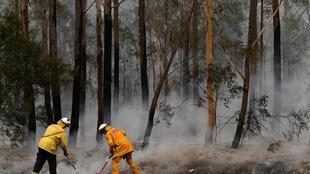 Rural Fire Service volunteers (RFS) and Fire and Rescue NSW officers (FRNSW) contain a small bushfire which closed the Princes Highway south of Ulladulla, Australia, January 5, 2020. AAP Image/Dean Lewins