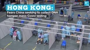 Vignetee hong kong testing V2