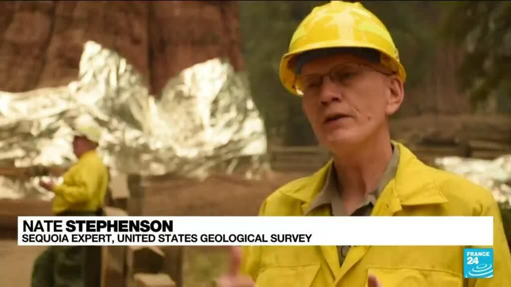 2021-09-23 17:10 Thousands fight wildfires threatening California's sequoias