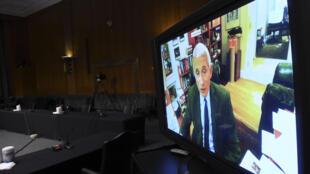 El doctor Anthony Fauci comparece ante el Comité de Salud del Senado de EEUU el 12 de mayo de 2020 en Washington a través de videoconferencia