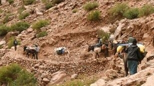 رعاة قرب قرية تغزيرت في إقليم الحوز في جبال الأطلس بالمغرب في 3 كانون الأول/ديسمبر
