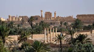 Vue d'ensemble de la cité antique de Palmyre, le 18 mai 2015.