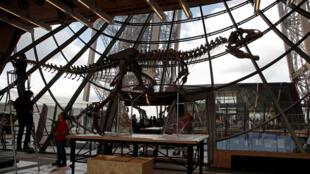 Trabajadores reconstruyen el fósil de un dinosaurio en la torre Eiffel, en París, Francia, el 2 de junio de 2018, antes de su subasta el 4 de junio de 2018.