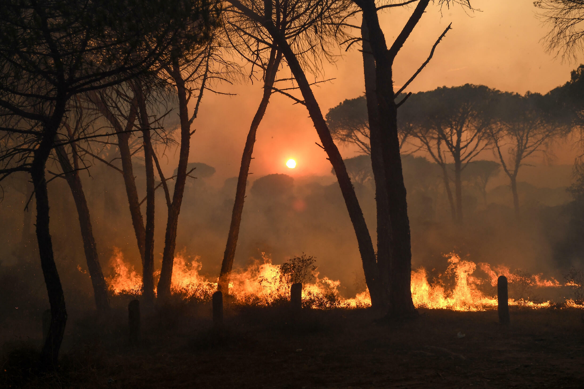 A blaze raging in southern France has killed two and forced thousands to flee