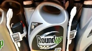 The number of lawsuits targeting Monsanto over Roundup has grown