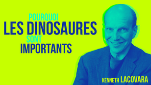 """Kenneth Lacovara, paléontologue, est l'auteur de """"Why dinosaurs matter""""."""