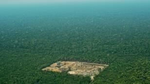 Brazil's National Institute for Space Research (INPE) said that around 2,254 square kilometers (870 square miles) of the Amazon were cleared in July, a spike of 278 percent from a year ago