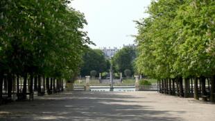 Jardin Luxembourg Paris