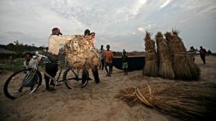 Le village de Piana-Mwanga se trouve dans la province de Tanganyika, dans le sud-est de la République démocratique du Congo.