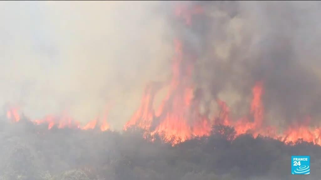 2021-08-12 10:34 Incendies en Algérie : au moins 69 morts en Kabylie, deuil national de trois jours