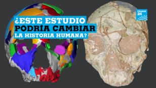 Captura de pantalla de un video de la agencia Associated Press que muestra la reconstrucción de un cráneo en 3D, parte de un estudio realizado por científicos de la Universidad de Tübingen en Alemania.